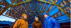 Fiskelejevandring med Hurtigruten - Ruby Rejser