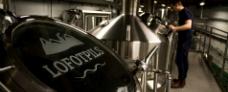 Lofotpils bryggeri - Hurtigruten - Ruby Rejser