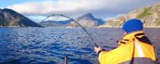 Fisketur i Lofoten Ruby Rejser